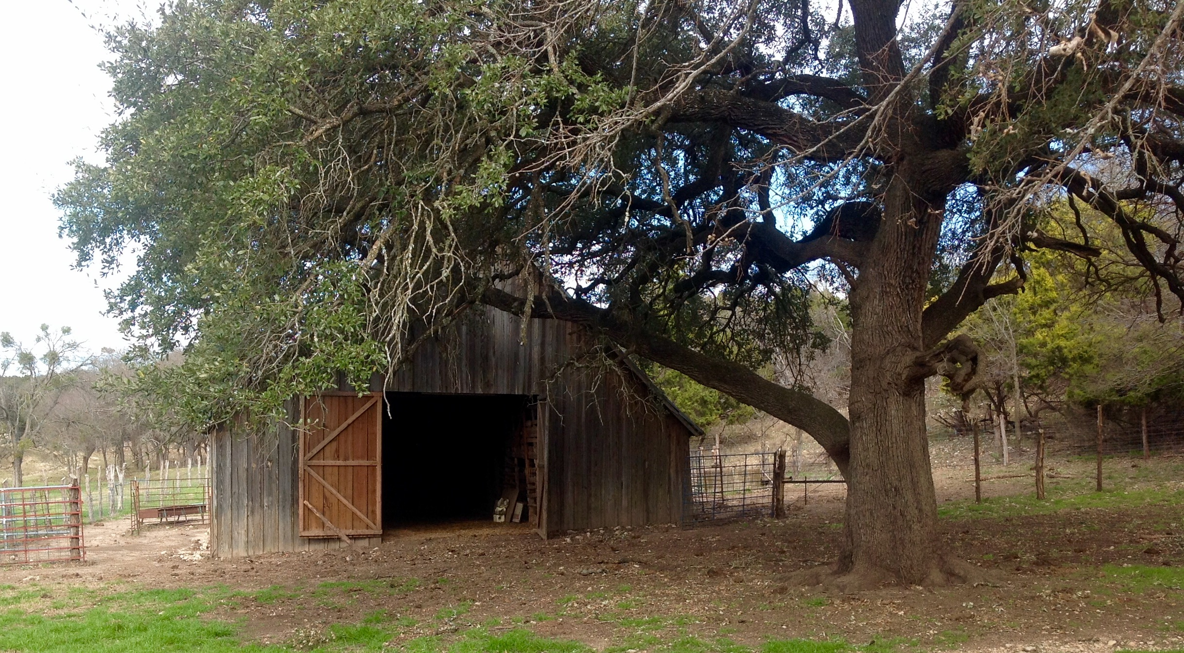 Barn Rustic Log Cabin Texas and Oklahoma Architect Architecture Firm