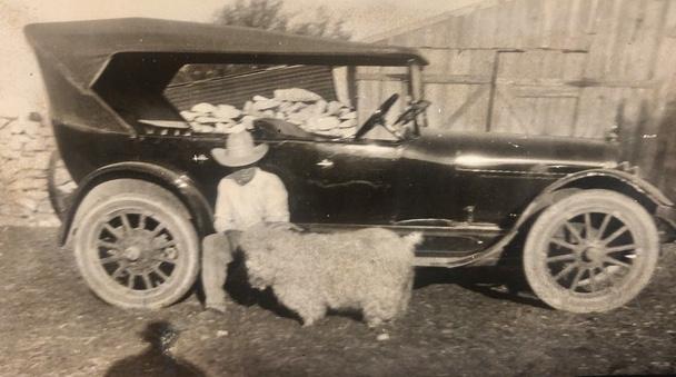 Goat, old car, classic car, Ranch, John Ward Ranch, Sonora Texas
