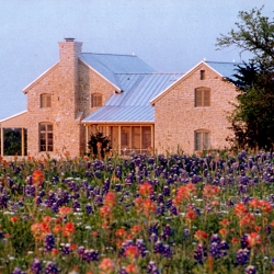 Wildflowers flowers Texas and Oklahoma Architect Architecture Firm